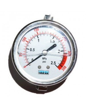 Pressure Gauge 25