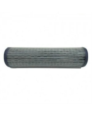 "10"" Virumag Pleated Filter"
